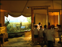 Treasures of the Museum exhibition and program space<BR> American Museum of Natural History - 1995